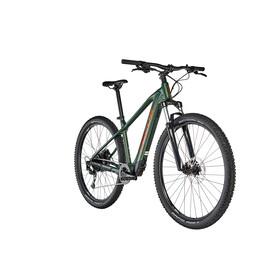 FOCUS Whistler² 6.9 E-mountainbike grøn